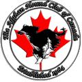 Afghan Hound Club Canada